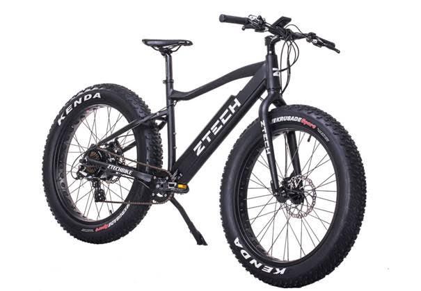 Bici elettrica fatbike for Offerte bici elettriche usate